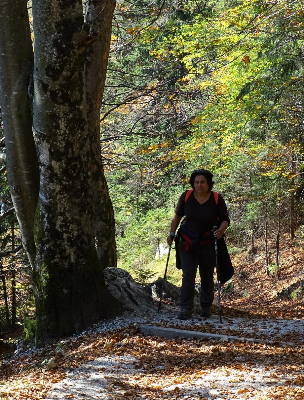 Nationalpark_berchtesgaden_Nadia_Baumgart-2