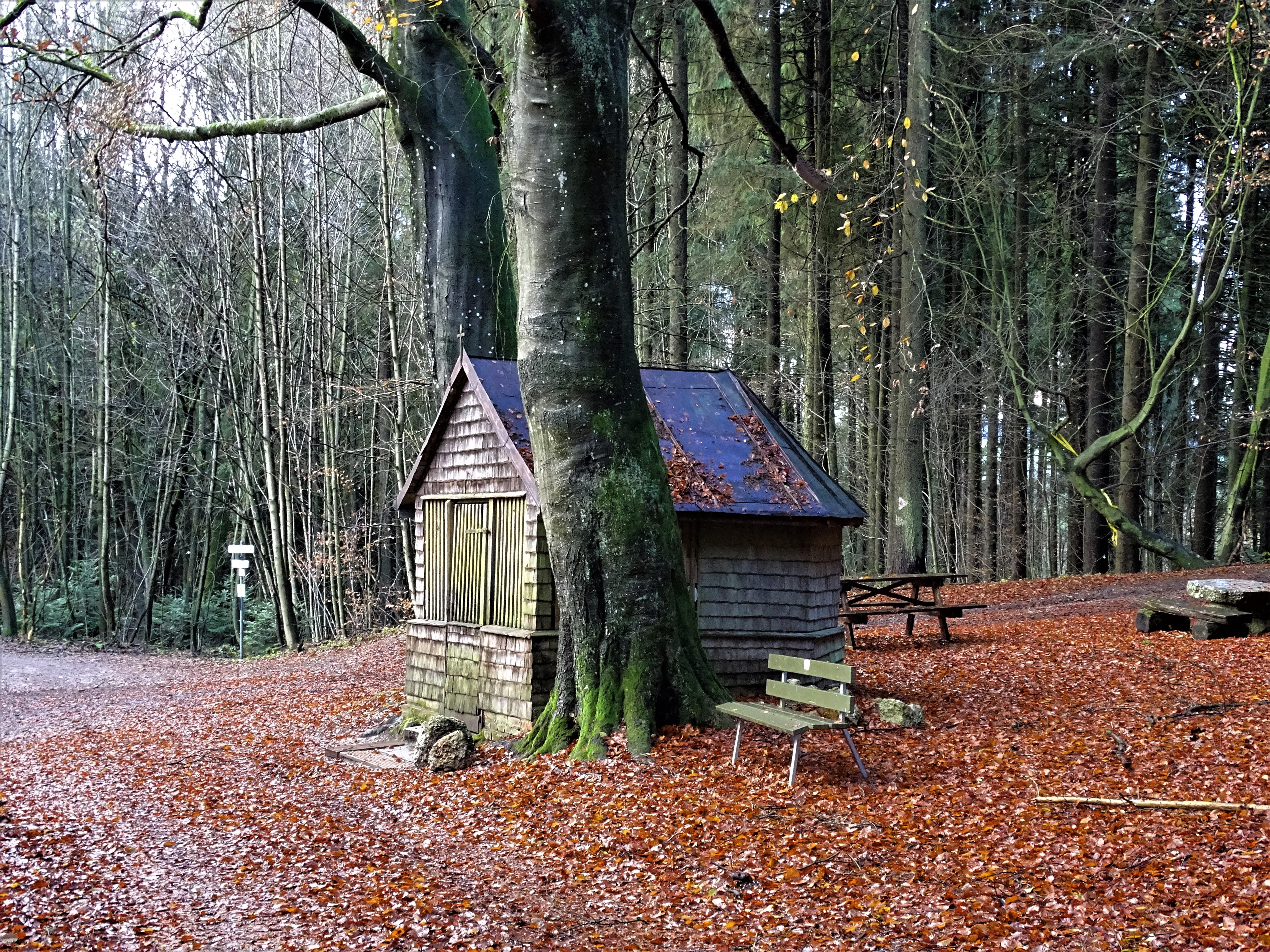 Holzkapelle in der Lugenz