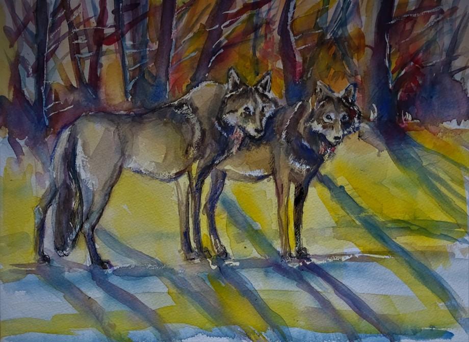 wolf_in_Bayern_Aquarell_Nadia_Baumgart