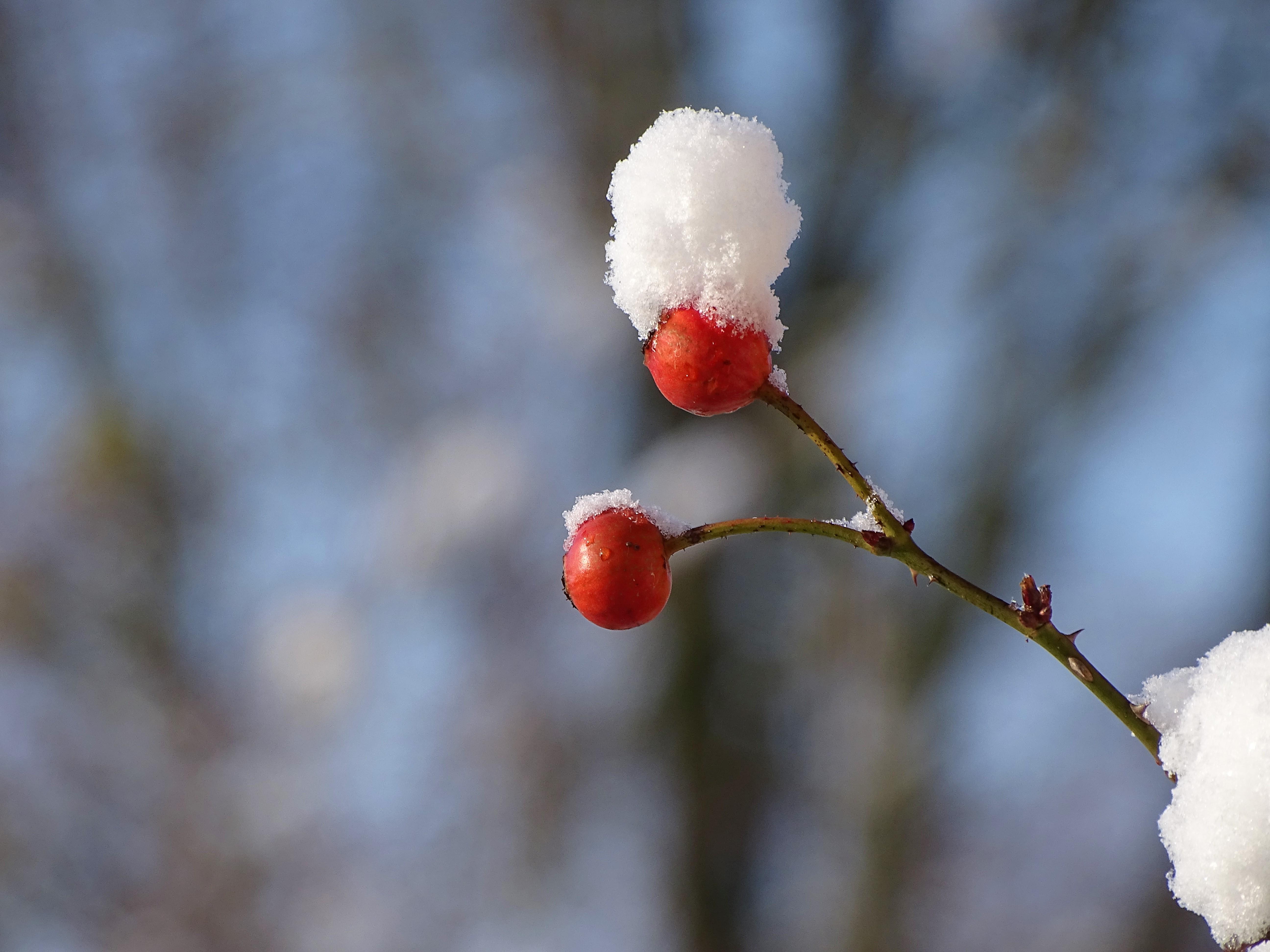 1-Schnee_Bad_Birnbach_Nadia_Baumgart