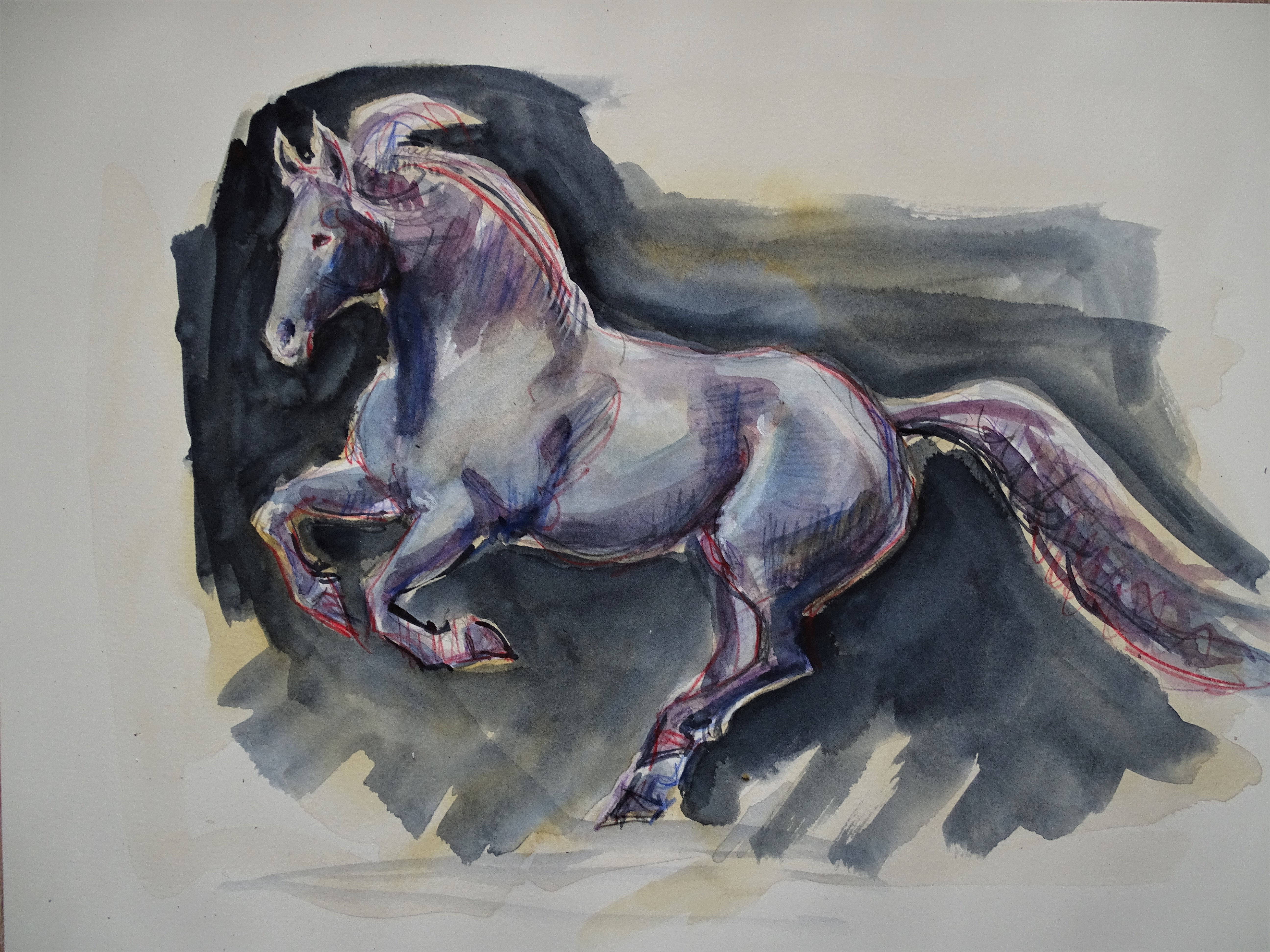 cheval_aquarelle_nadia_baumgart