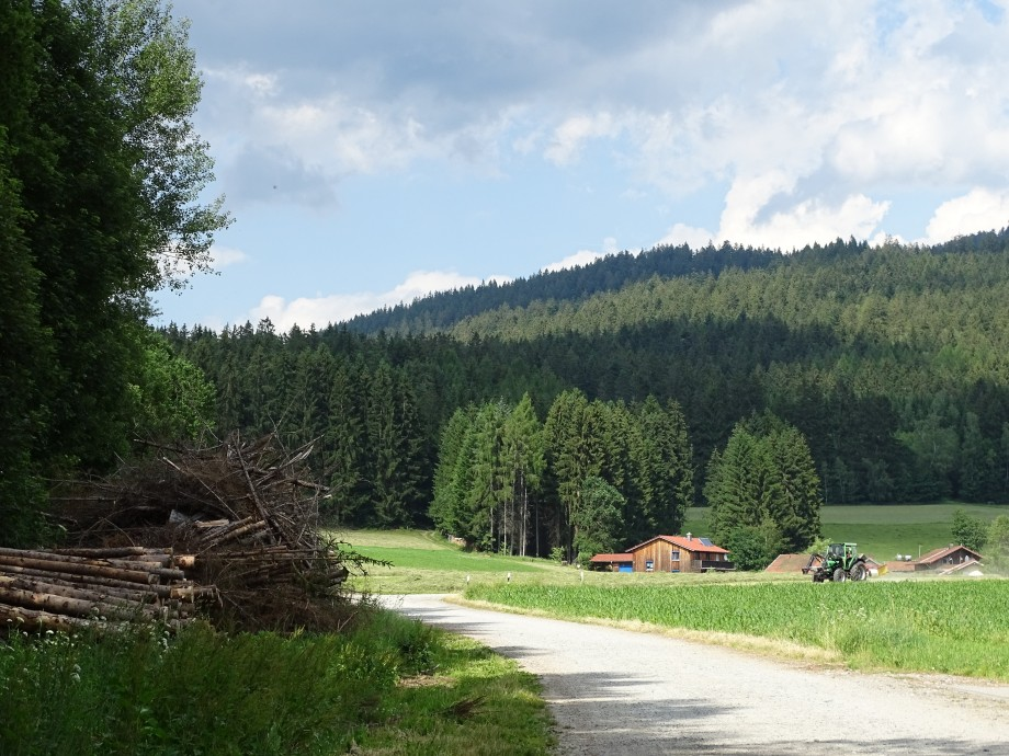 Zellertalradweg im Bayerischen Wald
