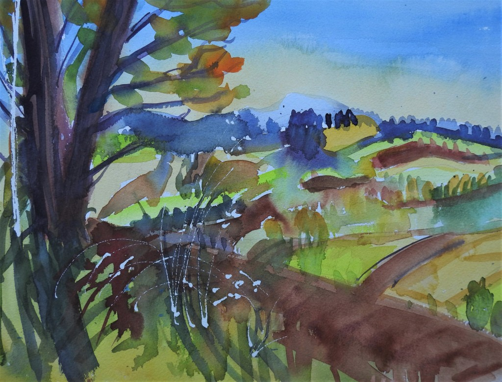 Landschaft in Bad Birnbach - Aquarelle