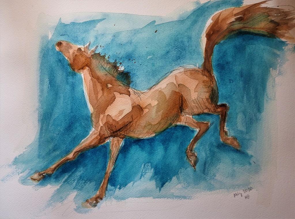 Rennendes Pferd - aquarell