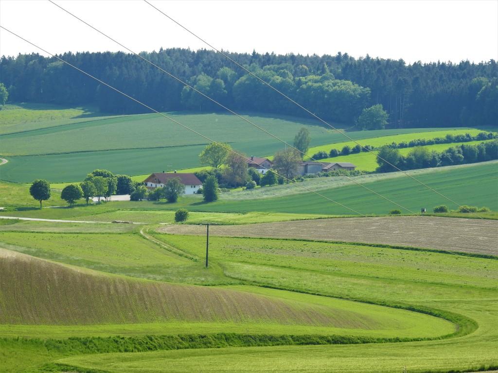 Wellige Landschaft in Oberbirnbach - Rottaler Landschaften