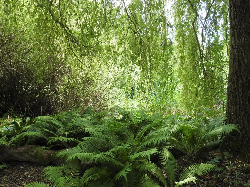 Naturgarten in Niederbayern