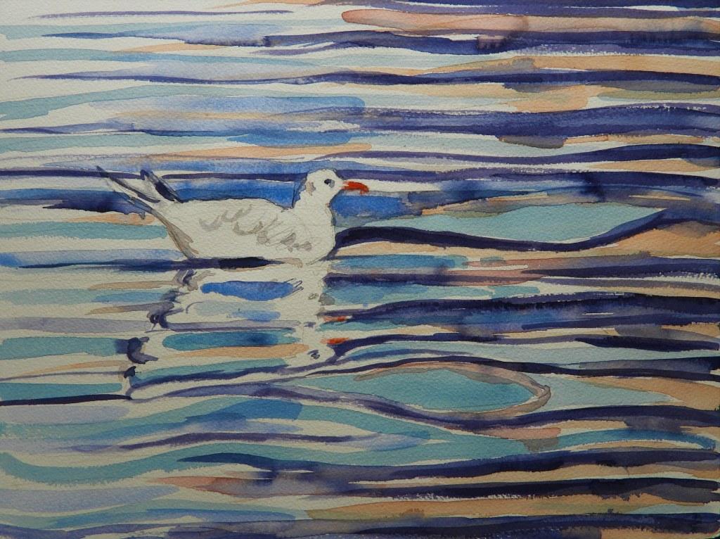 Aquarell einer schwimmenden Möwe