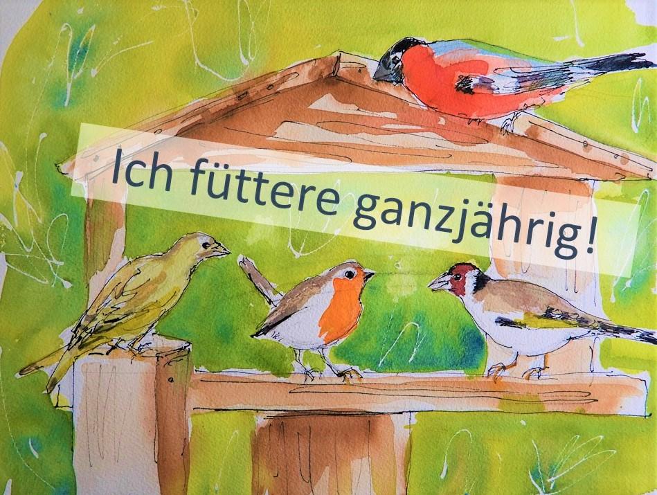 Ganzjährige Vogelfütterung in Rottal-Inn ist wichtig