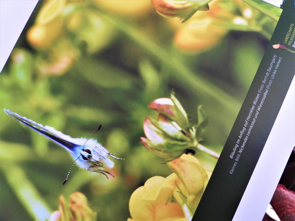 Kalender Landschaftspflegeverband Rottal-Inn