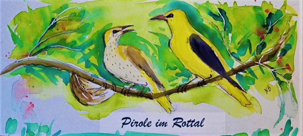 Schokolade mit Motiven von gefährdeten Vögeln im Rottal - Pirole