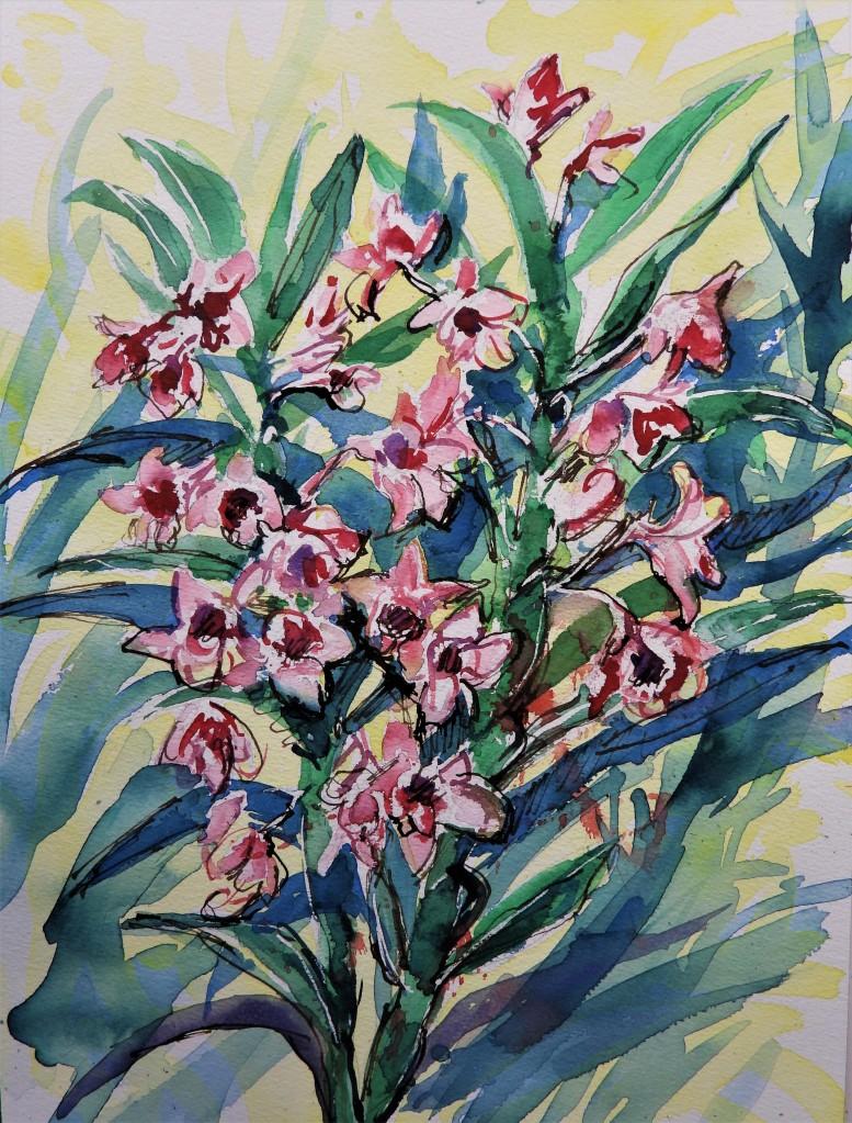 Orchideen - Aquarell von Nadia Baumgart
