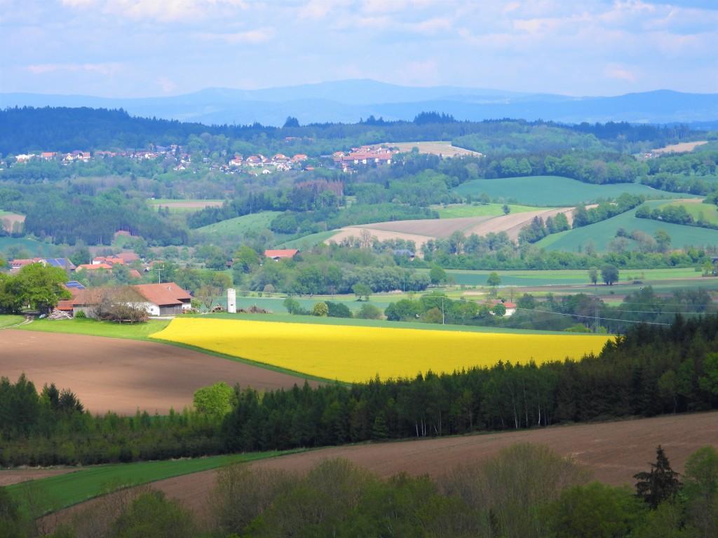 Rottaler Landschaft von Nadia Baumgart