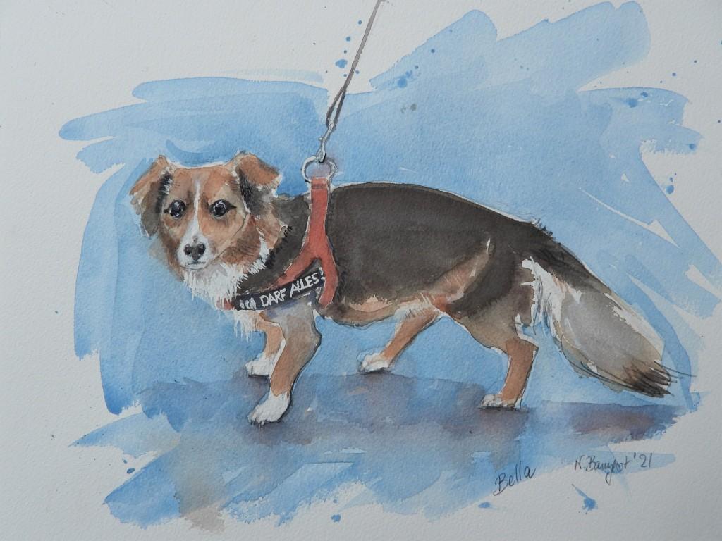 Bella, der Birnbacher Café Hund - Aquarelle von Nadia Baumgart