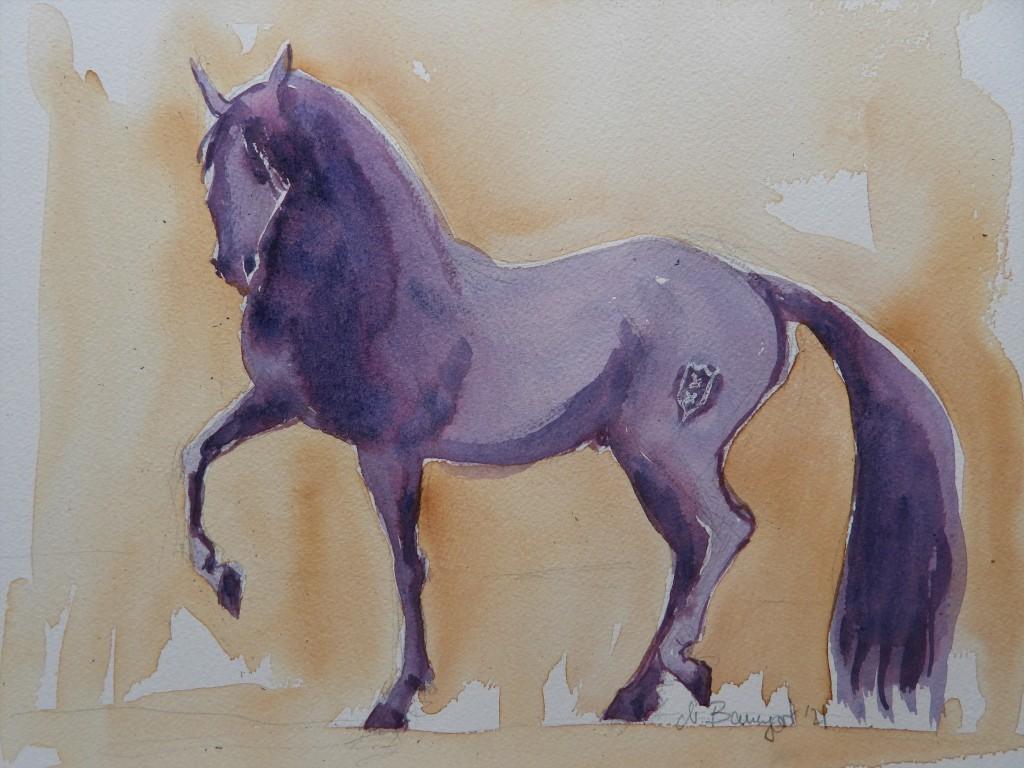Andalusisches Pferd - Aquarelle von Nadia Baumgart
